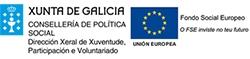 A Consellería de Política Social e o Fondo Social Europeo financian o programa de voluntariado de Down Compostela